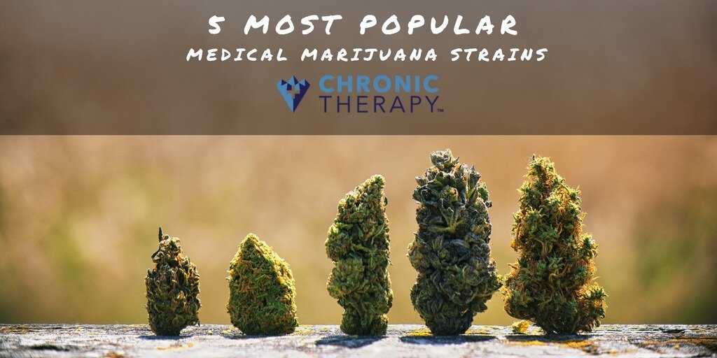 5 Most Popular Medical Marijuana Strains